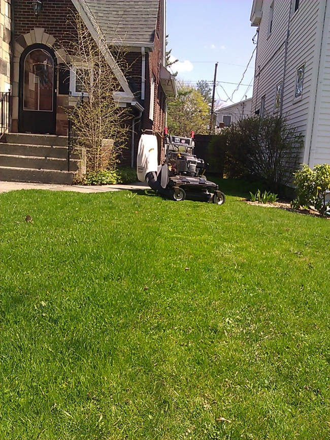 Mowing2