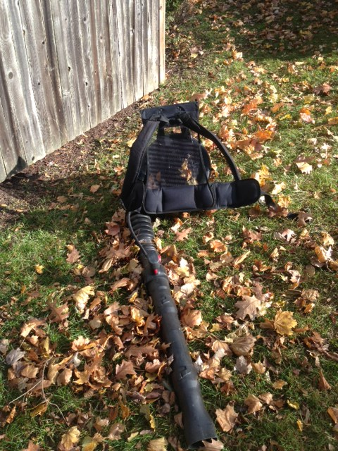 Spring and Fall Cleanups
