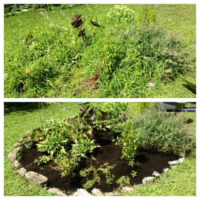 Flower bed clean outs and weeding